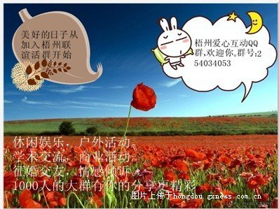 财政收入_美国财政部长_浙江城市财政收入排名