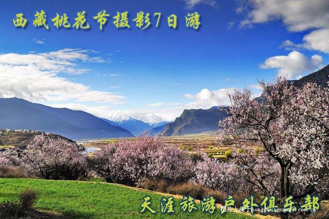 3月西藏林芝桃花节摄影