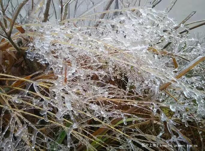 融水打鸟坳雪景