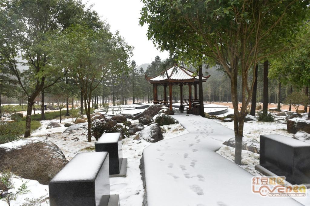 2018姑婆山的第二场雪