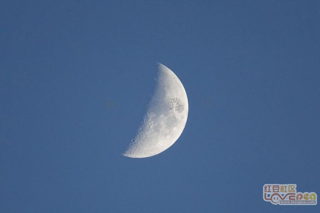 傍晚的月亮