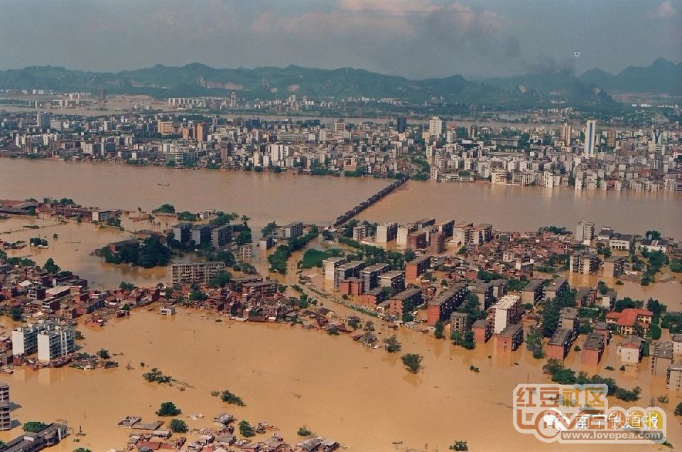 22年前柳州的洪水,你还记得吗