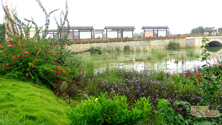 金光湿地公园