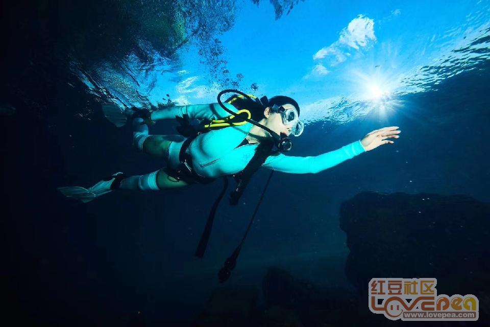 2018国际潜水小姐