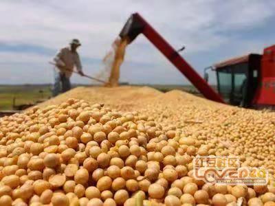 这几件事的发生,致使国内大豆大涨不疑