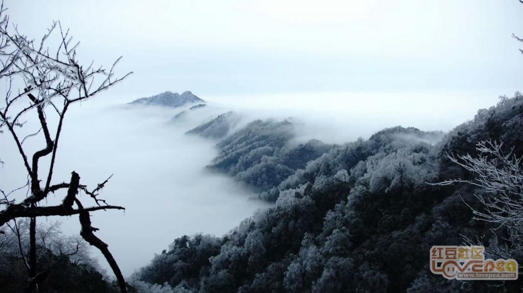 桂林猫儿山雾凇游记