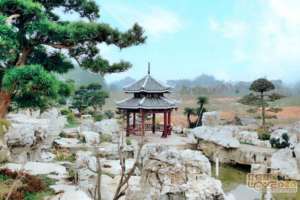 金秀县桐木镇文化公园
