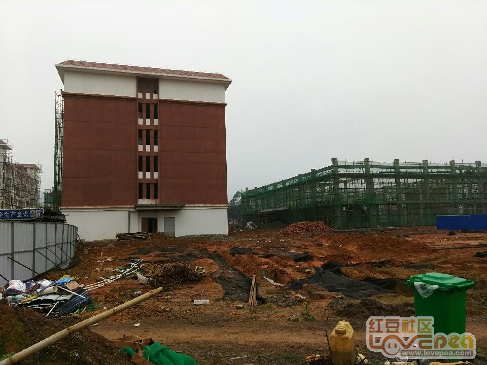 红豆市第九初级中学叙事最新建设。-来宾老师社区进展的我初中作文图片