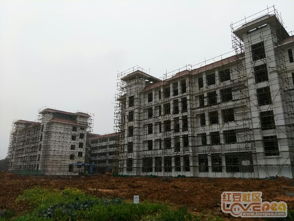 来宾市第九初级中学进展最新建设。-红豆社区初中能当什么兵图片
