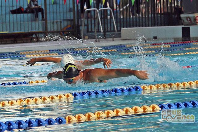 南宁第十届运动会游泳赛