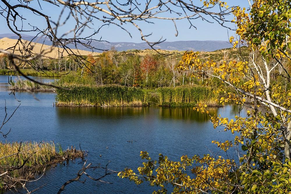 新疆掠影之七-白沙湖