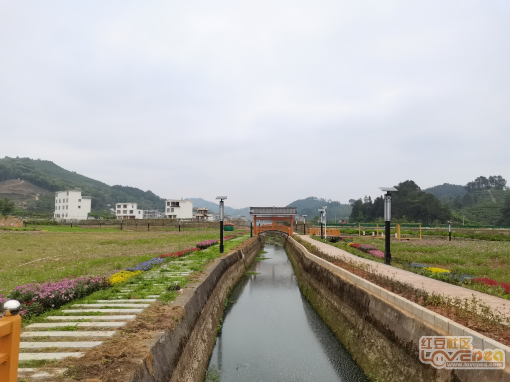 美丽的荔浦蒲芦茶城