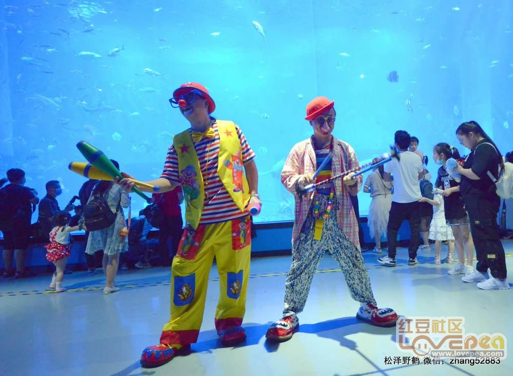 传统汉服文化走进海洋馆