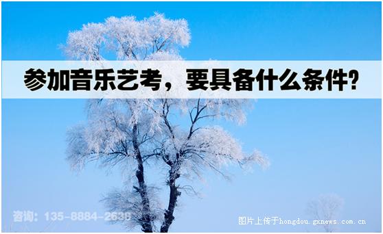 武汉艺考音乐培训学校,为艺考助力|掌上红豆