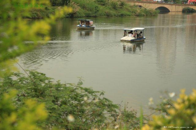 周日荡舟湖中游