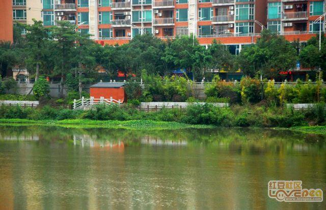 秋天的贺江河畔