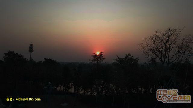 园博园的黄昏