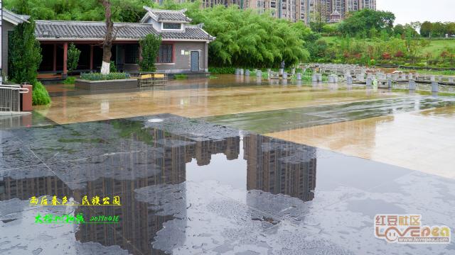 雨后春色,贵港民族公园