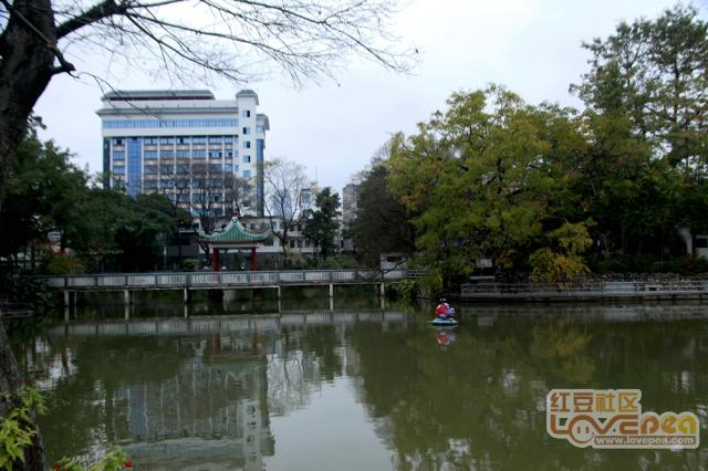 柳候公园的风景
