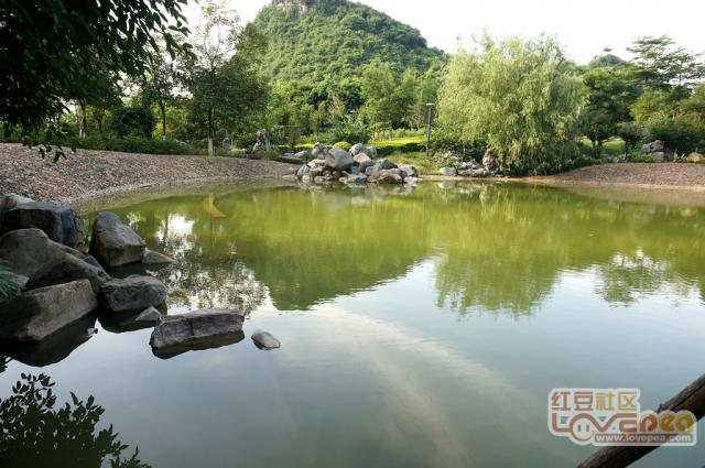 八步天池美景