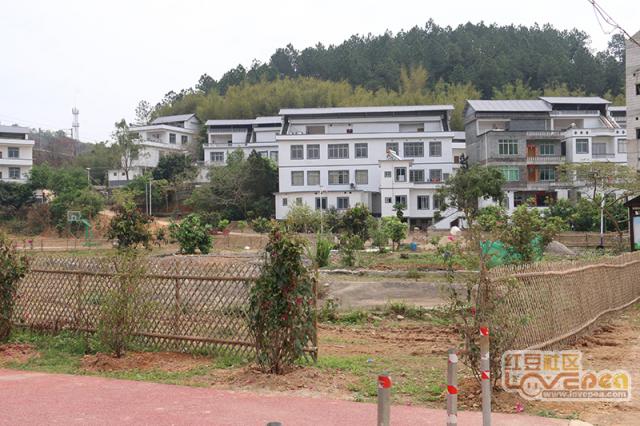 藤县新农村