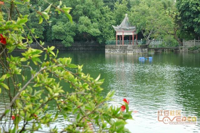 玉林人民公园摄