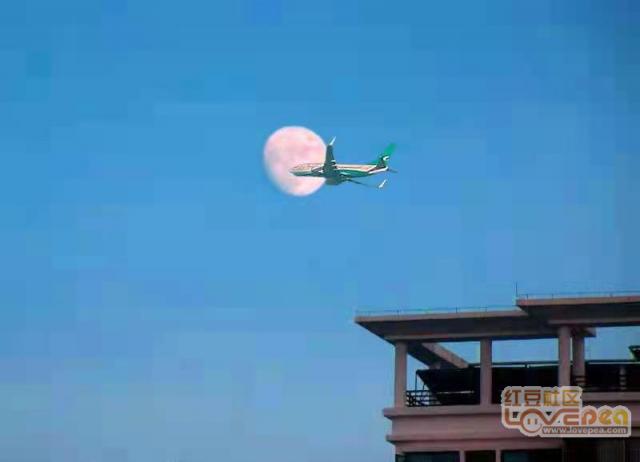"""终于把飞机""""逮住了"""""""