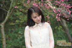 樱花与少女